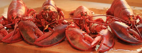 cooked_lobsters_960x360